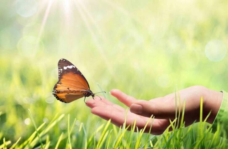 Navigating Life Transitions